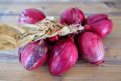 Rote italienische Zwiebeln